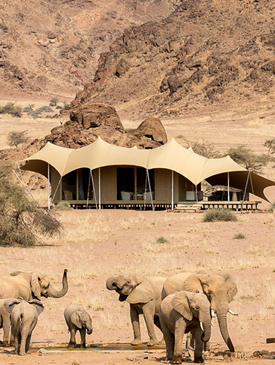 Safaris in Namibia